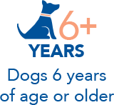 Dogs 6 years of age or older