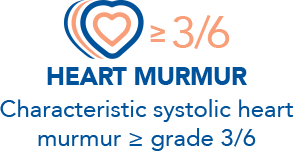 Characteristic systolic heart murmur greater than or equal to grade 3/6